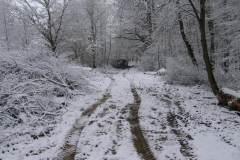 2009-3-Výstavba-mlatové-cesty-Milíčovský-les-a2